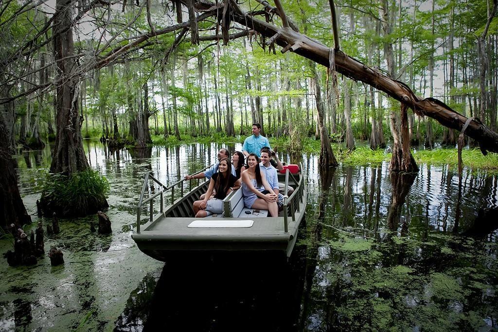 Eco-Friendly Swamp Tours Cajun Encounters