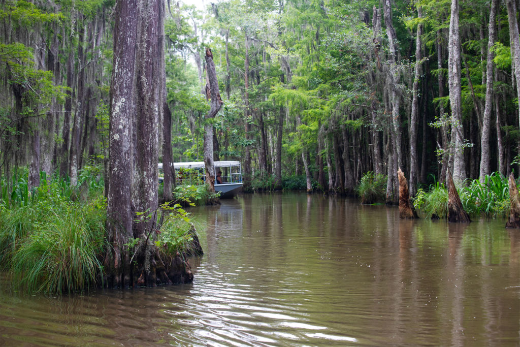 pearl river eco-system eco-tourism preservation Cajun Encounters