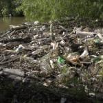 Littering Affects Honey Island Swamp pearl river nature Cajun Encounters