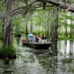 Honey Island Swamp Cajun Encounters
