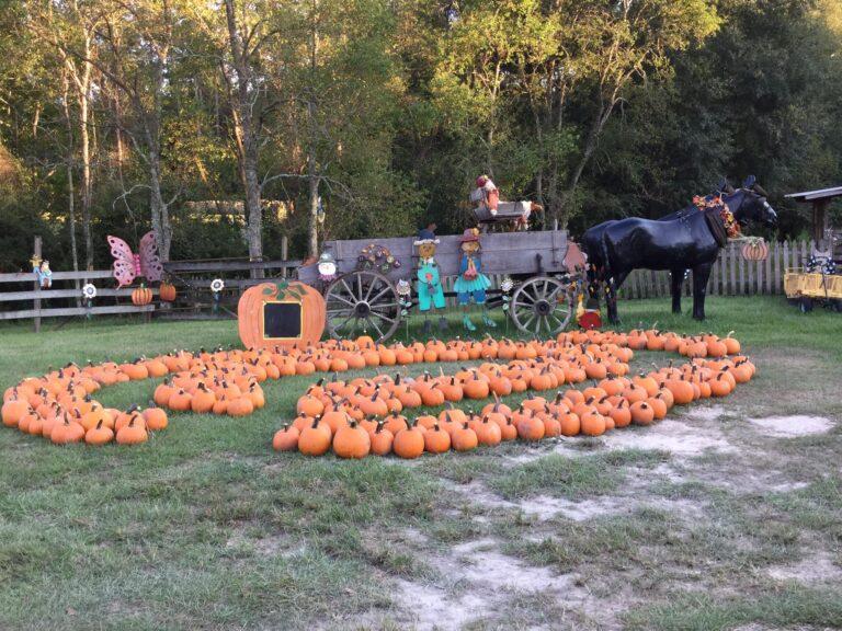 Halloween Cajun Encounters